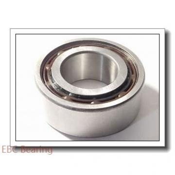 EBC 6004  Single Row Ball Bearings