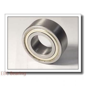 EBC 6204 2RS  Single Row Ball Bearings