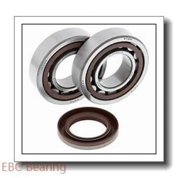 EBC 1641 2RS  Single Row Ball Bearings