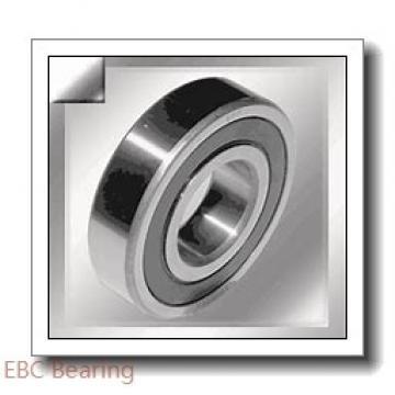 EBC 6006 2RS C3  Single Row Ball Bearings