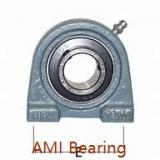 AMI UCP205C4HR5  Pillow Block Bearings