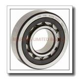 BEARINGS LIMITED 6300-2RSNR Bearings
