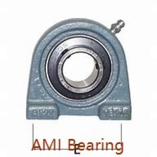 AMI UCFL215-47  Flange Block Bearings #1 image
