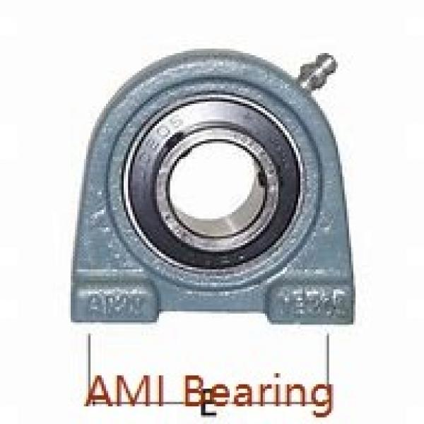 AMI UCP205C4HR5  Pillow Block Bearings #1 image