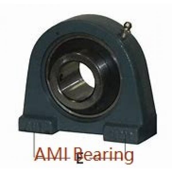AMI MUCHPL202-10RFB  Hanger Unit Bearings #1 image