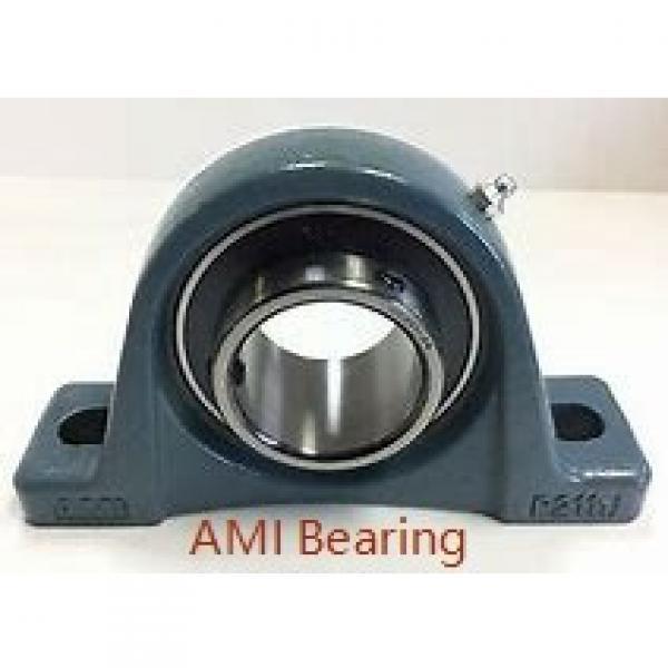 AMI MUCHPL206-20RFB  Hanger Unit Bearings #1 image
