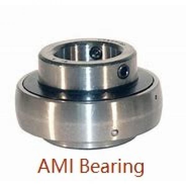 AMI UKFX05+HA2305  Flange Block Bearings #1 image