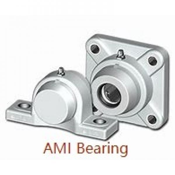 AMI UCFB202  Flange Block Bearings #1 image