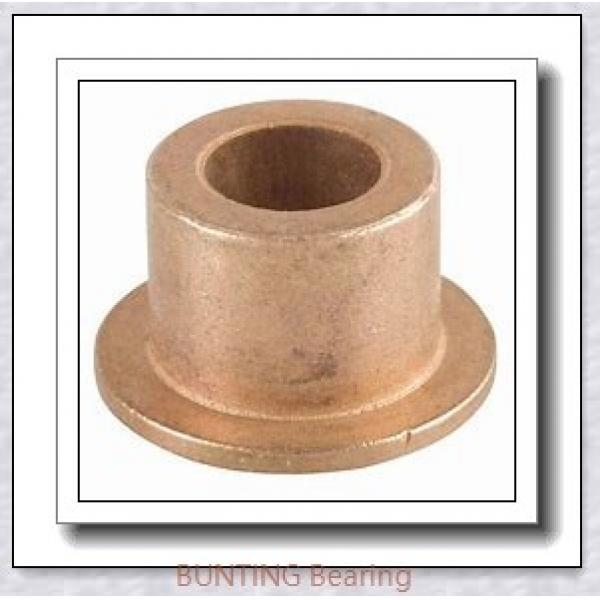 BUNTING BEARINGS AA124203 Bearings #1 image