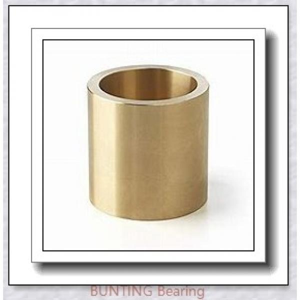 BUNTING BEARINGS CB405036 Bearings #1 image