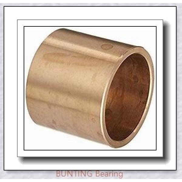 BUNTING BEARINGS CB162412 Bearings #1 image