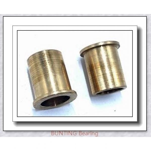 BUNTING BEARINGS CB202818 Bearings #1 image