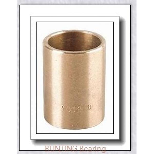 BUNTING BEARINGS AA081004 Bearings #1 image
